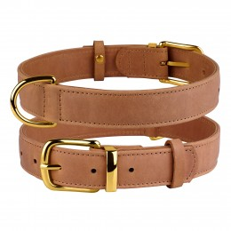 Ошейник для собак кожаный BronzeDog Crazy коричневый