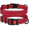 Ошейник для Собак BronzeDog Active Нейлоновый со Светоотражением и Пластиковой Пряжкой Красный
