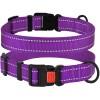 Ошейник для Собак Нейлоновый со Светоотражением и Пластиковой Пряжкой Фиолетовый