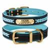 Ошейник для Собак Кожаный BronzeDog Premium с Литой Латунной Фурнитурой и Адресником Черно-Голубой