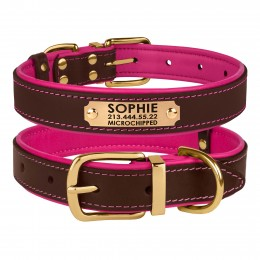 Ошейник для Собак Кожаный BronzeDog Premium с Литой Латунной Фурнитурой и Адресником Коричнево - Розовый
