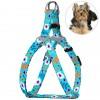 Шлея для Собак Мелких Пород BronzeDog Urban Цветы Ментол